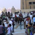 lots of people, camels and horses